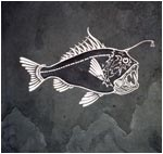 Deep Sea Angler Engraving