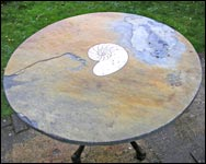 Ammonite Table